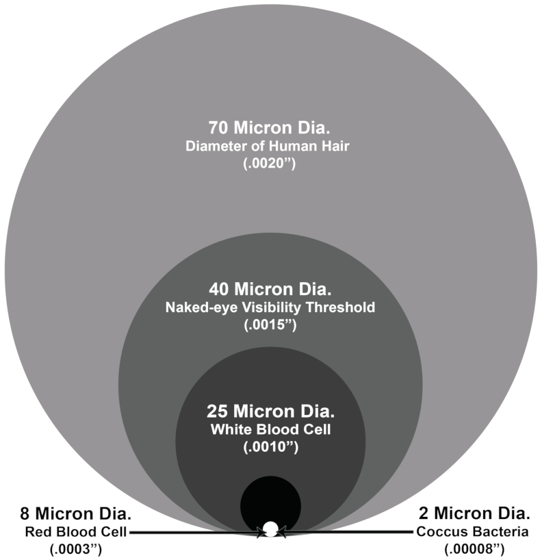 A micron size comparison of the diameter of human hair, the naked-eye visibility threshold, white blood cells and coccus bacteria. Caption: Some micron size comparisons